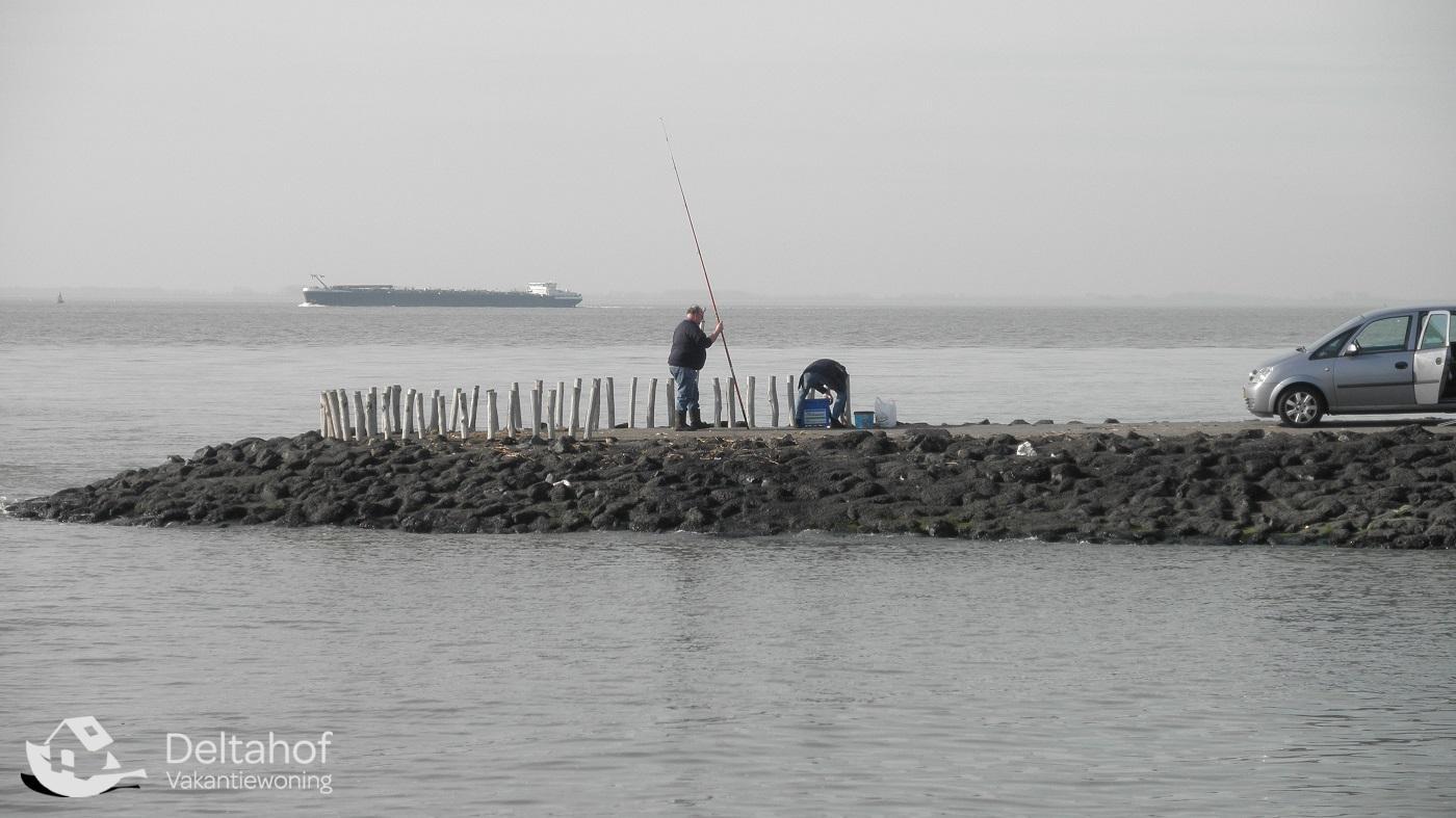Vakantiewoning Deltahof | vissen
